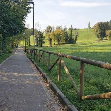 fall_walk